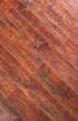 瑞嘉强化复合地板欧罗巴系列卢浮橡木