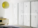 韩丽衣柜工艺玻璃系列-花影