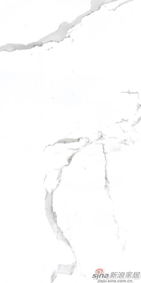 JAY2699522普通大理石瓷砖-0