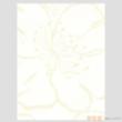凯蒂纯木浆壁纸-写意生活系列AW53113【进口】