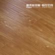 富得利地板 强化地板 拿铁风情