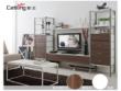 猫王家具组合电视柜MWA-ZH19