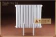 佛罗伦萨 但丁 钢制暖气片家用壁挂式散热器暖气