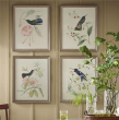 Valerie 飘香藤与蜂鸟手绘装饰画