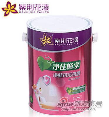 紫荆花漆 净味抗污抗菌