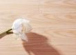 春天地板强化――七彩印象yx-1