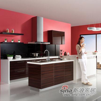 德意丽博橱柜 整体厨房橱柜
