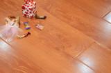 林昌地板--11系列--丰富多彩EOL1112
