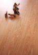 富得利强化地板印象T1431