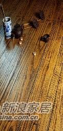宏鹏地板健康仿实木古木留音系列―雪松-0
