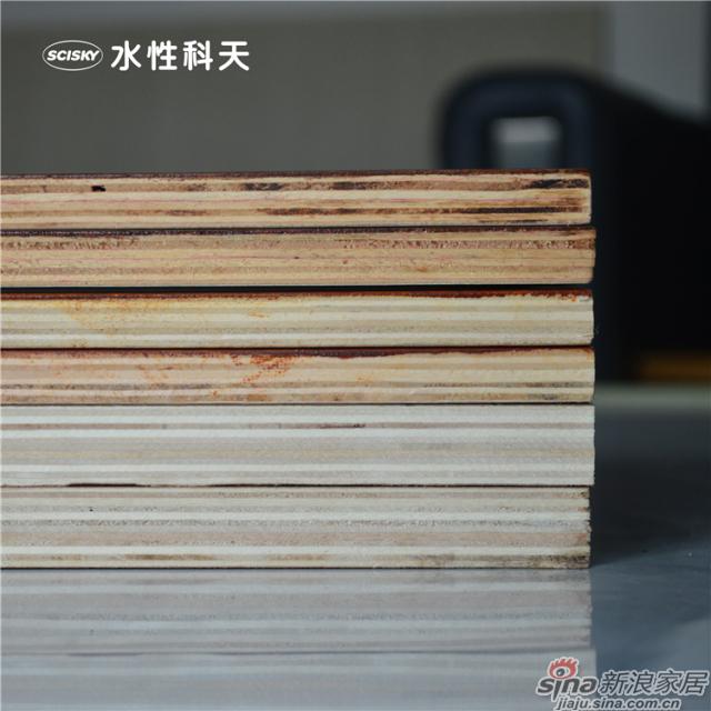 水性胶合板-3
