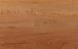 生活家白栎-橡木色