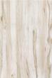 现代木系列