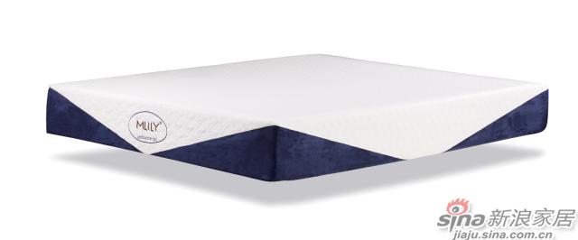 宠爱之选·凝胶记忆绵床垫-3