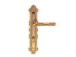 雅洁AS2011-H4205C-0245铜锁体+70铜锁胆