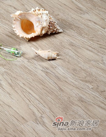 瑞澄地板--全能王系列9809