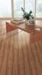 欧典地板都市主人系列美国橄榄木
