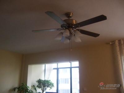 客厅吊扇灯