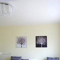 客厅的灯,和墙上的画,貌似很普遍,先挂上再说了