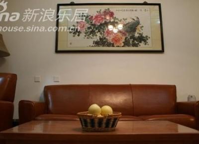 客厅,芝华士真皮沙发,坐着感觉相当厚实