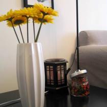 house warming party 同事送的花瓶
