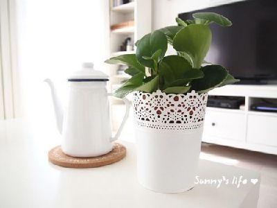 我们的小窝是现代简约的,所谓简约其实就是一种生活态度,一种在喧嚣都市里,让我们的生活空间更自然、纯净、简洁、清新并且宁静的态度:简约是一种较高层次的生活品质,而不是简朴、吝啬、敷衍等对生活质量缺乏的生活态度!白色搪瓷水壶,白色蕾丝花盆,淘宝有售。
