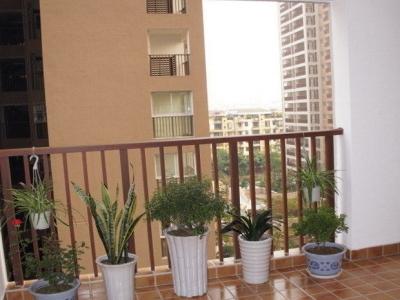 客厅外面的阳台,养了些花草的。也算是生活阳台把,晾晒衣服都在这里。