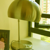 这个是我自己去选的工作灯,以后就好用了,上网方便啊,这个灯是在国安局淘的,200门,头是可以转动的,很重的底座