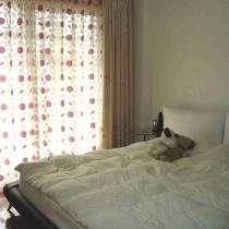 唯一花哨一点的窗帘,大床简洁舒适,傍晚拍的,所以比较昏暗