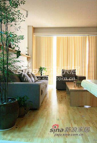 沙发-窗帘