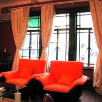 怒放的沙发色彩