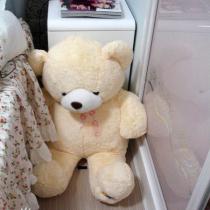 朋友送的熊宝贝