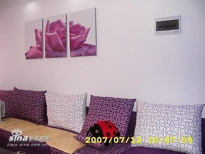 我家客厅的大沙发