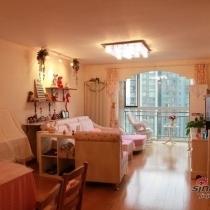 粉色的客厅