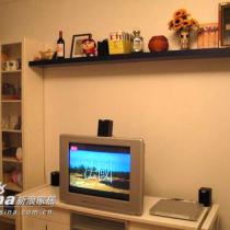 电视,书柜还有隔板