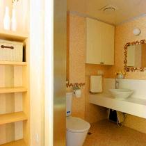 卫浴间秀从这个角度可以看出,原木色和卫生间的瓷砖颜色非常配马赛克勾勒镜子边框