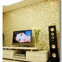 电视柜 和背景墙 都是自己得意之购