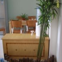一进门的印象,现在我把捆在一起的竹子打开了