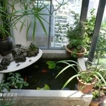 入户花园——青石鱼缸