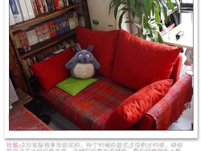 沙发:这沙发是我多年前买的,那个时候的款式还没有过时吧,呵呵 其实过不过时没有关系,关键是它真的很舒服,累的时候就在上面窝着,看看喜欢的漫画书,很惬意呢……