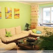 漂亮的 沙发