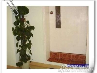 上楼的楼梯对面..门是通往露台的,中间经过一个储藏室...养得半死不活的绿植,风雨天放在露台上被风吹倒花盆捐了....