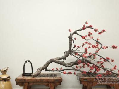 竹木气质中式三居 悠然见南山