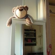 阳台上,还放了一个落地的梳妆柜,是臭美的地方,也是小熊看守的领地