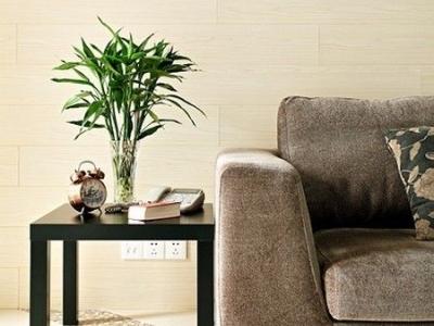简约的沙发边几,整体给人的感觉是比较的自然清新的
