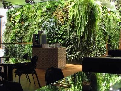 生态餐厅植物墙绿化
