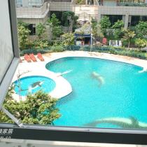 书房窗外的游泳池