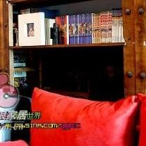 电视墙。。后面是老王的一幅油画~~~~