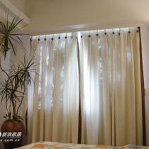 卧室一角的天竹,夜间放氧的东东