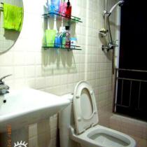 洗手间所有的材料基本上是买的最便宜的,洗手盆120,马桶250,墙砖0.8一块(20cm30cm),镜子30。因为这房子原本买来出租投资用的,所以能省则省了